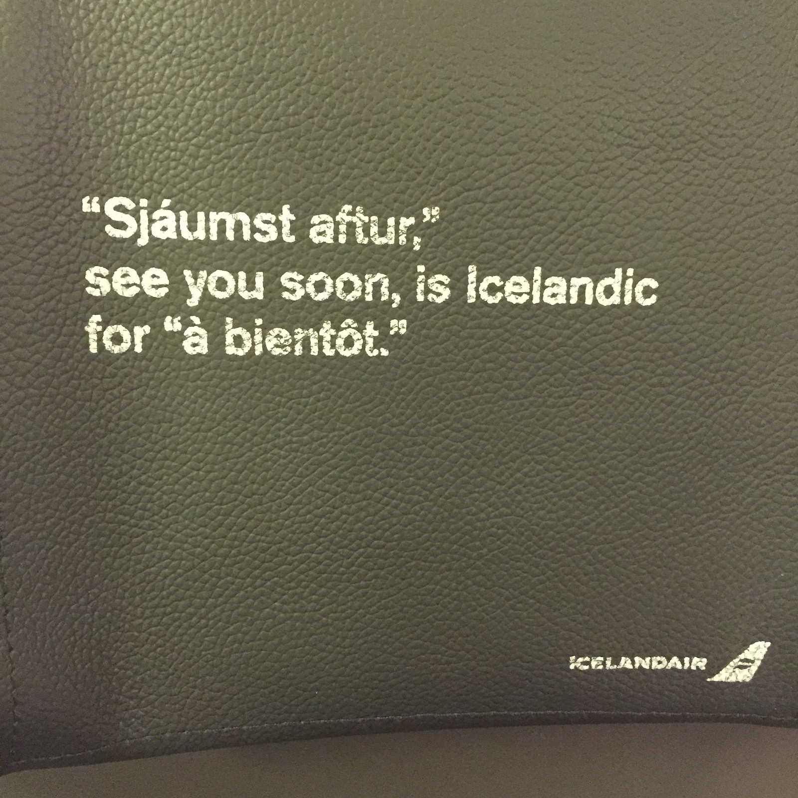 Seatback Langurage Lesson, Iceland