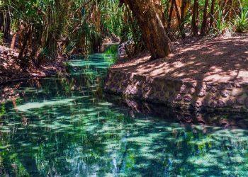 Katherine Hot Springs – Katherine, Australia