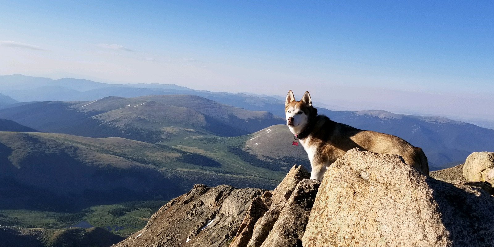 Best Inspirational Travel Quotes Mountain Peak Dog