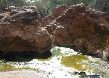 Paralana Hot Springs