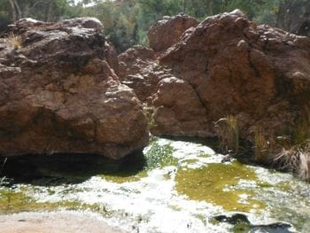 Paralana Radioactive Hot Springs