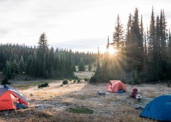 Point Wolfe Campground