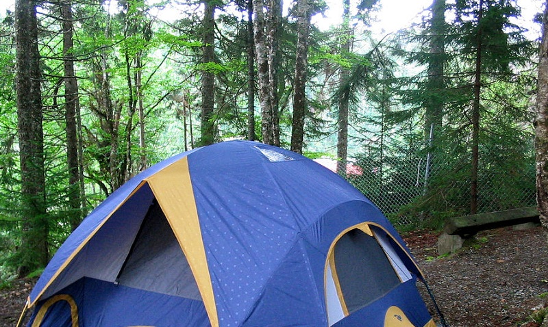 Point Wolfe Camping
