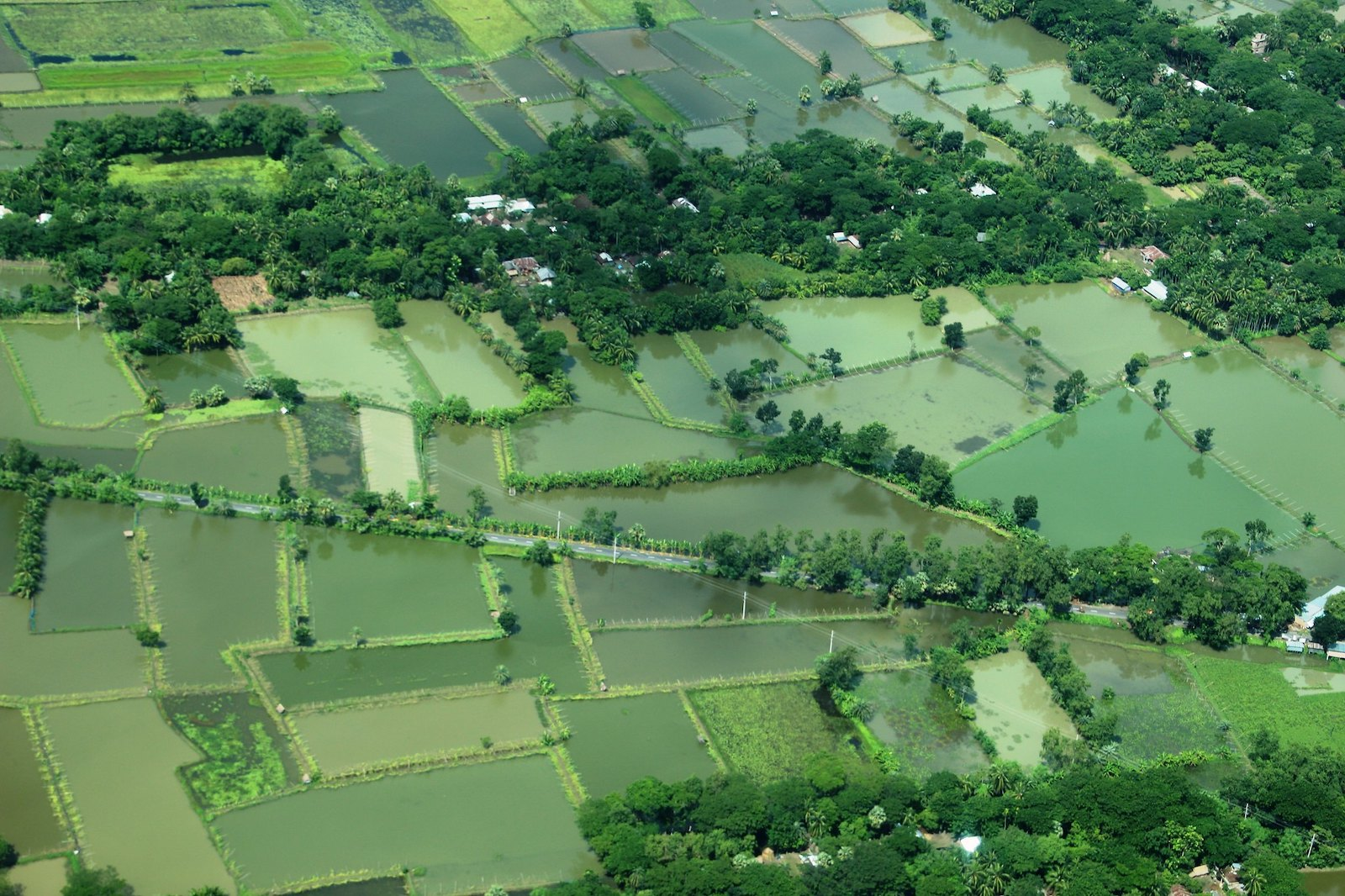 Waterbodies from the air between Dhaka and Khulna, Bangladesh