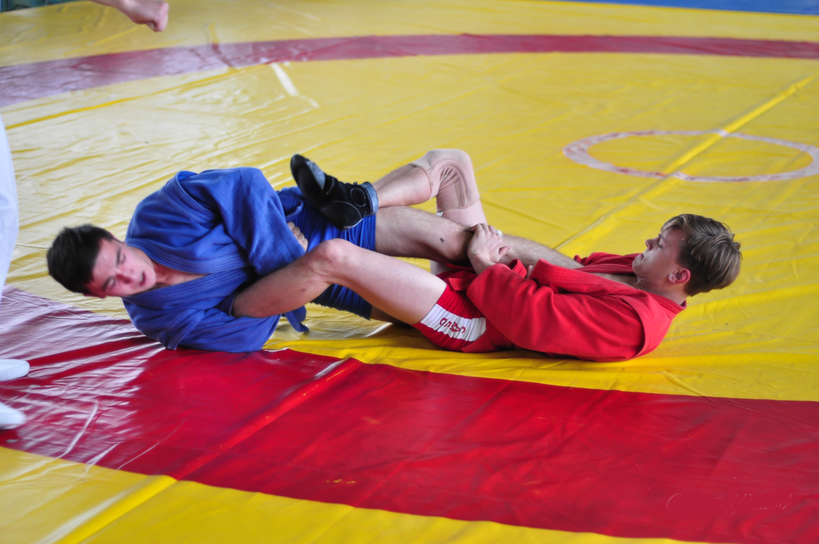 Best Grappling Styles Sambo Leg Locks