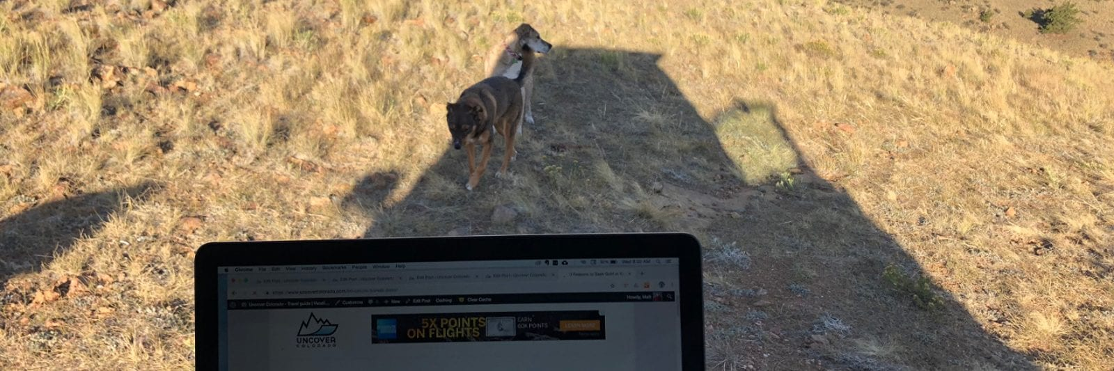 Working Remotely From Anywhere Laptop Hartsel Colorado