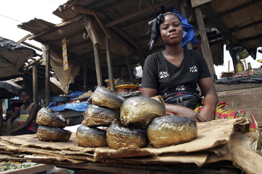 Market woman sells smoked fish, Cote d'Ivoire