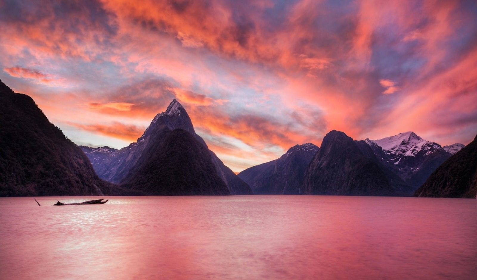 Milford Sound- New Zealand