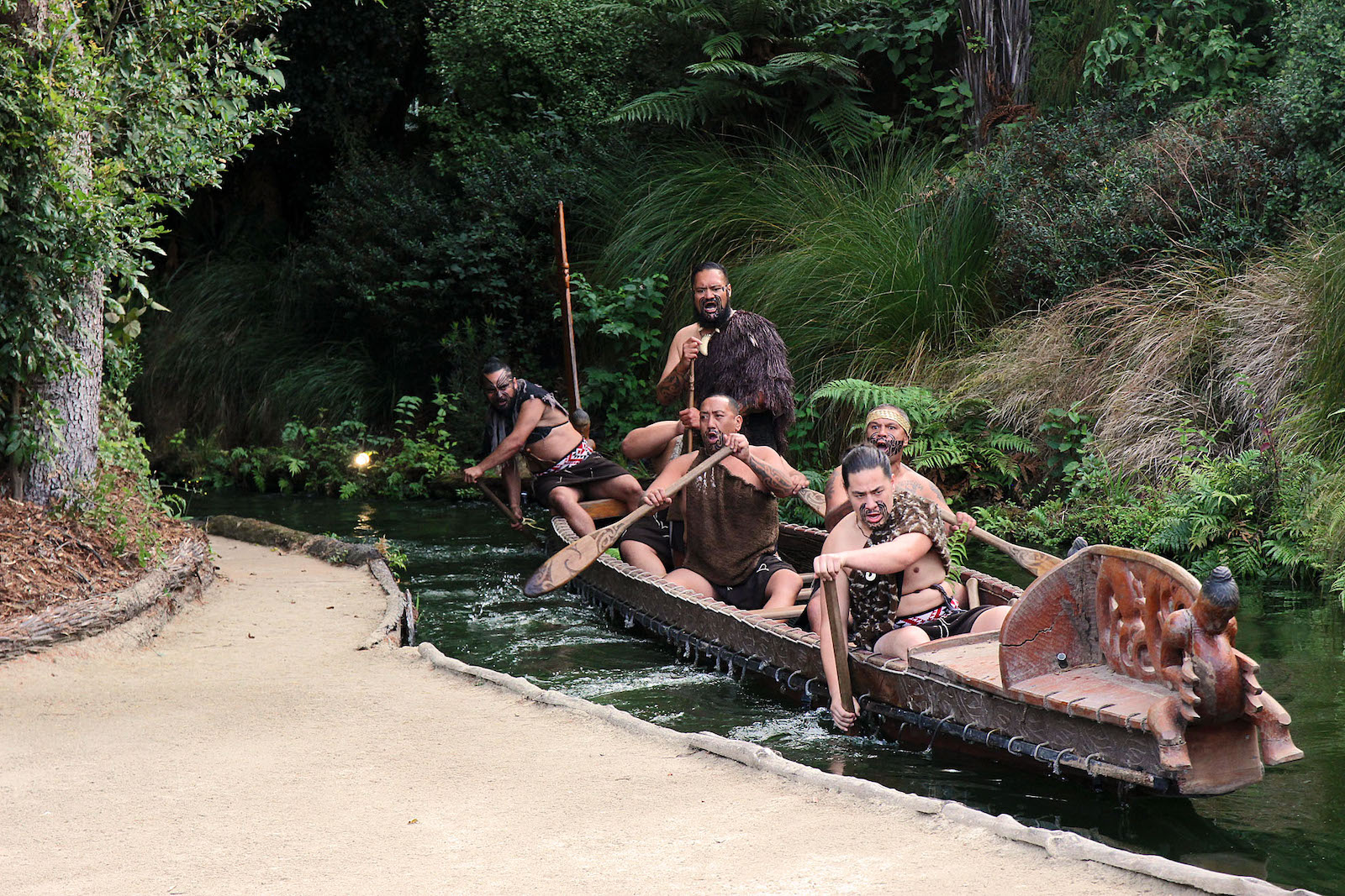 War Canoe New Zealand
