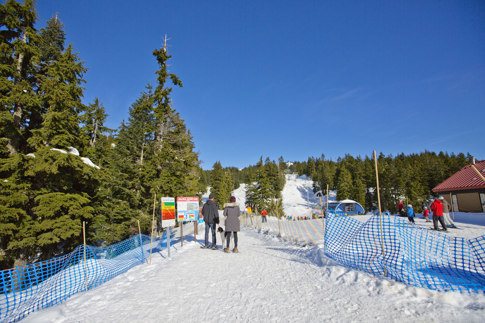 Image of visitors walking around the property at Mt. Seymour in Canada