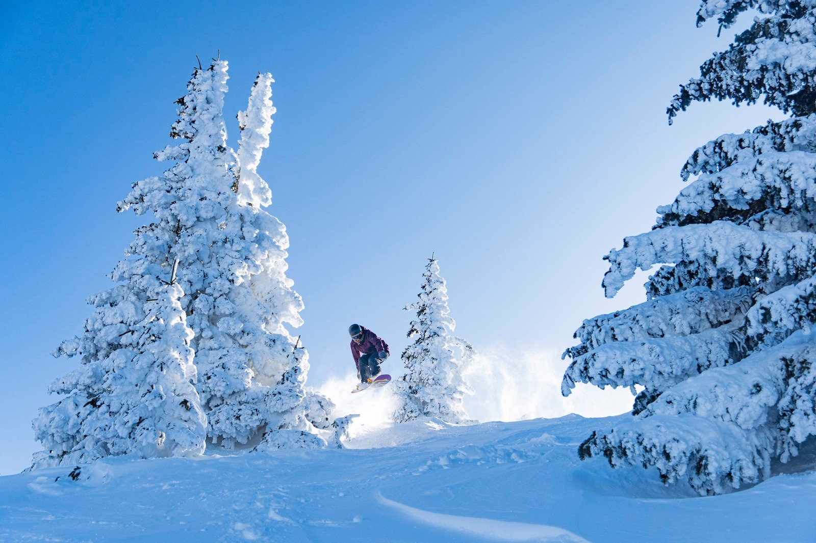Image of a snowboarder hitting backcountry trails in Ski Santa Fe in New Mexico