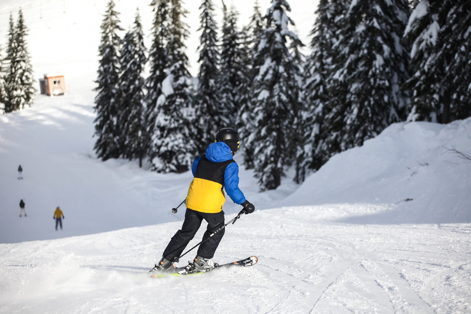 Image of a skier going down the slopes at Stevens Pass in Washington