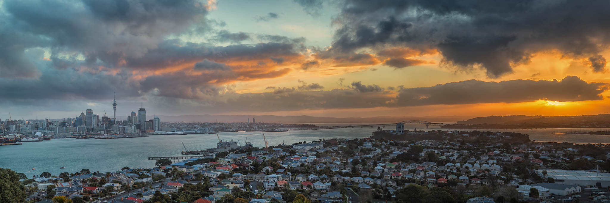 Overlooking Auckland, New Zealand at sunset