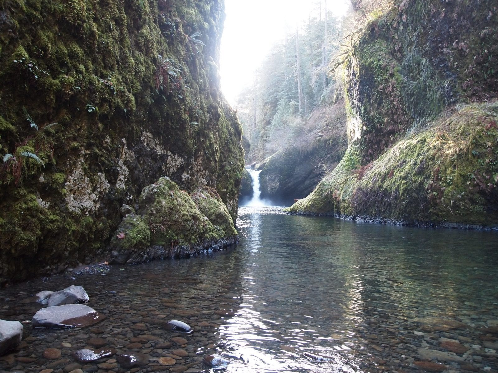 Eagle Creek in the Columbia River Gorge